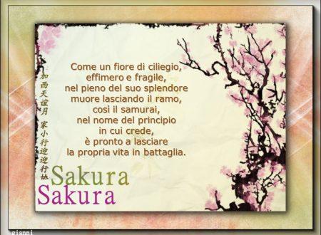 Sakura, un fiore ma anche un simbolo